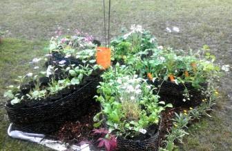 Les jardins tout terrains de Guigui