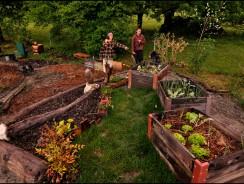 Jardinage et partage aux Dévens